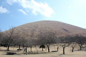 山焼き前のさくらの里からの大室山(2月11日撮影)
